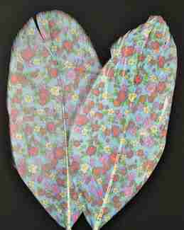 """Printed Feathers """"Flowers"""" Design"""